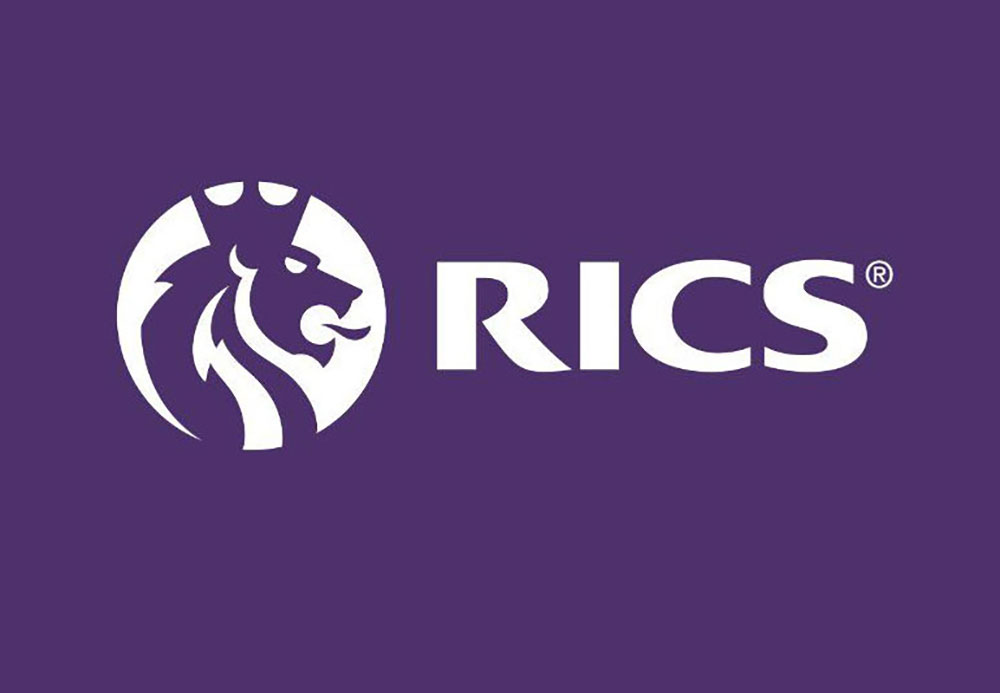 The Importance of RICS